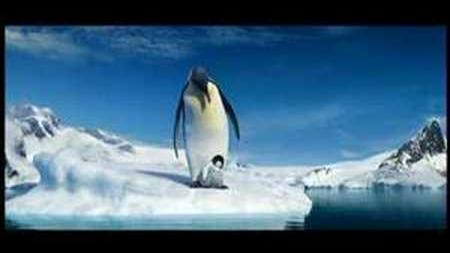A Happy Feet Moment