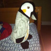 Alex the Penguin