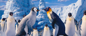 2011 happy feet 2 014