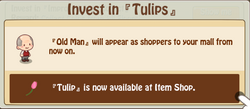 Tulips Investment