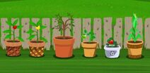 All Plants In-Game