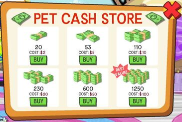 Current Pet Cash Screen