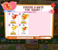 Example of the breeding screen