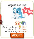 Argentinian Cat