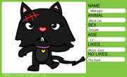 Midnight The Black Catg