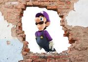 Wall luigi