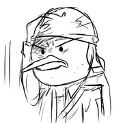 Flapsface
