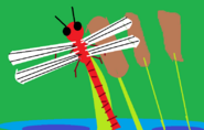 Big Picture - Dragonfly