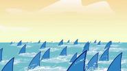 Wp numerous shark fins