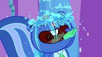 Petunia Drinks Mouthwash