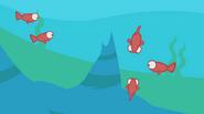 Fisharoundarock