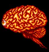 Braingolem2