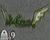 Appowreath