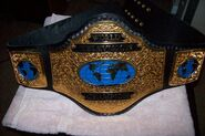 Wcw-television-title