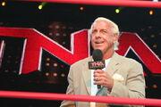 800px-Flair TNA