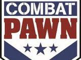 Combat Pawn