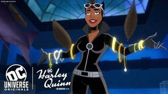 Get to Know Catwoman Harley Quinn Season 2 DC Universe