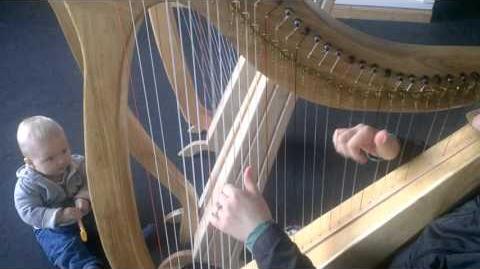 Celtic Harp - Butterfly