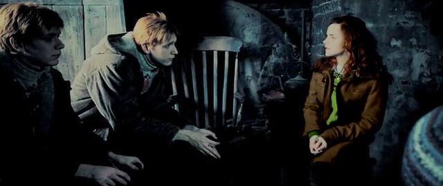 File:Hermione-fredandgeorge.jpg