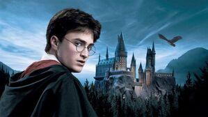Harry-potter-mejor-persona-810x455