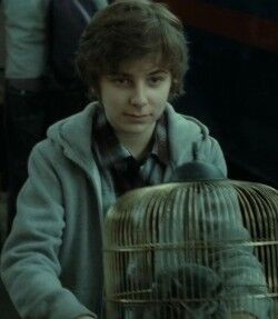 Image result for james sirius potter""