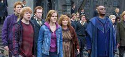 WeasleysHermioneyKingsley Battle of Hogwarts HPDH2