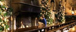 Harry Potter alone at the fireplace (Christmas 1991)