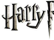 Wonderbaarlijk Categorie:Afbeeldingen van LEGO Harry Potter | Harry Potter Wiki LD-65
