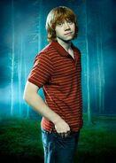 Rupert Grint8