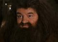 Hagrid comforting hermione.png