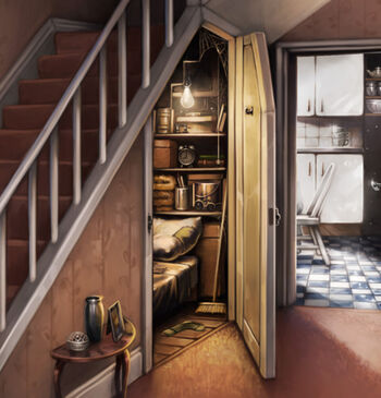 placard sous l 39 escalier wiki harry potter fandom powered by wikia. Black Bedroom Furniture Sets. Home Design Ideas