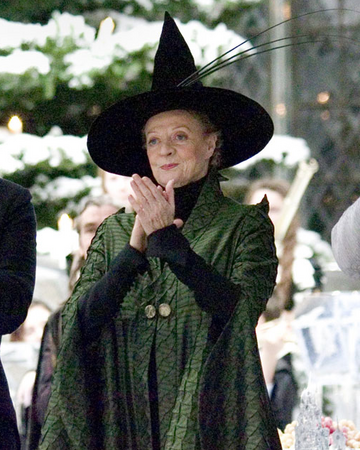 Harry Potter Costume Accessory Kid/'s McGonagall Witch Hat