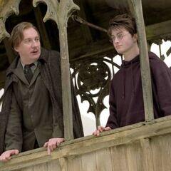 Римус и Гарри разговаривают