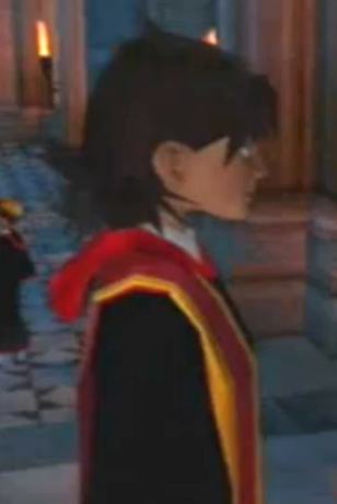 File:Unidentified Gryffindor Prefect 1.PNG