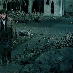 Гарри уходит с поля боя