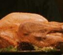 Turkey (food)