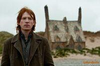 HP7 Bill Weasley