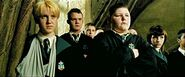 Draco armbruch clique