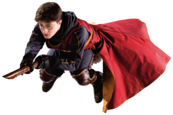 HBP Harry Playing Quidditch™