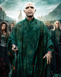 Harry-potter-lord-voldemort-r2