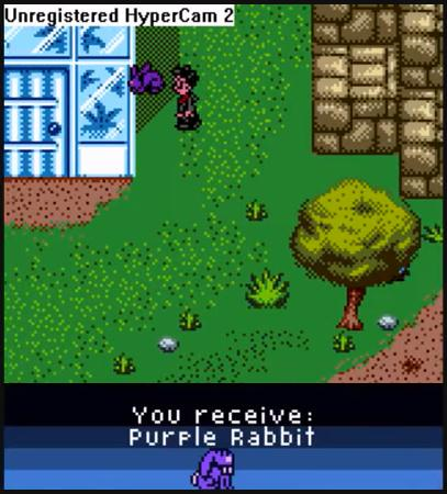 File:Purple Rabbit.jpg