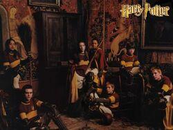 Equipo Quidditch Gryffindor