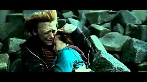 Harry Potter and the Deathly Hallows Part 2 - Neville kills snake
