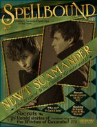 Spellbound – 'The Wizard Who Caught Grindelwald'