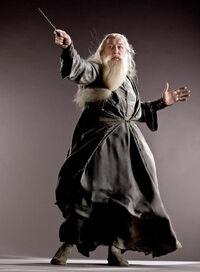 Dumbledorephoto