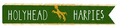 Holyhead Harpies Banner.png