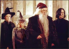 Harry Potter Movie Pictures-Professors
