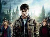 Гаррі Поттер і Смертельні Реліквії: частина 2