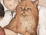 Potters' cat