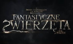 FZiJJZ Logo PL